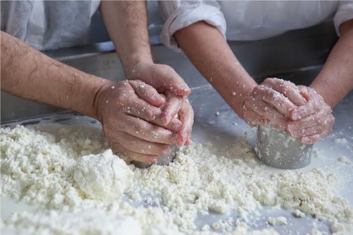 Как в Португалии сыр делают